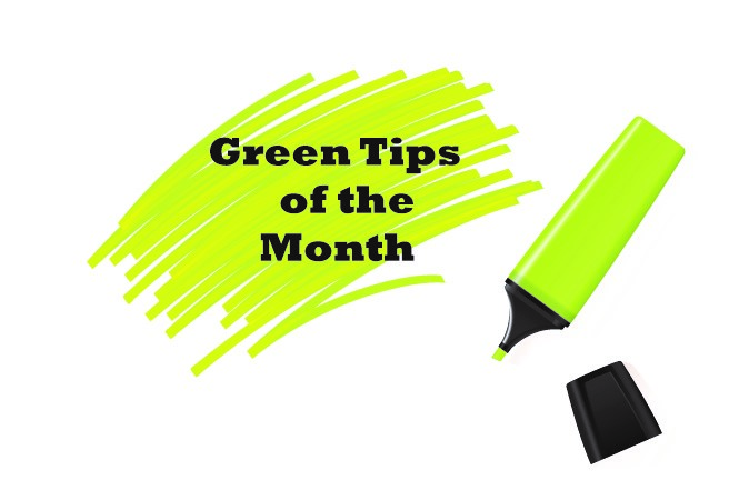 Green-Tips-of-the-month-PLT